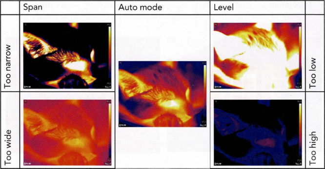 Infrared thermography comparisons